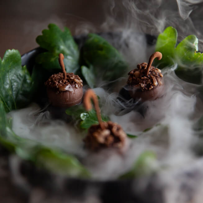 5da5702f86d4f-Between the oaks - Estates acorns (1)