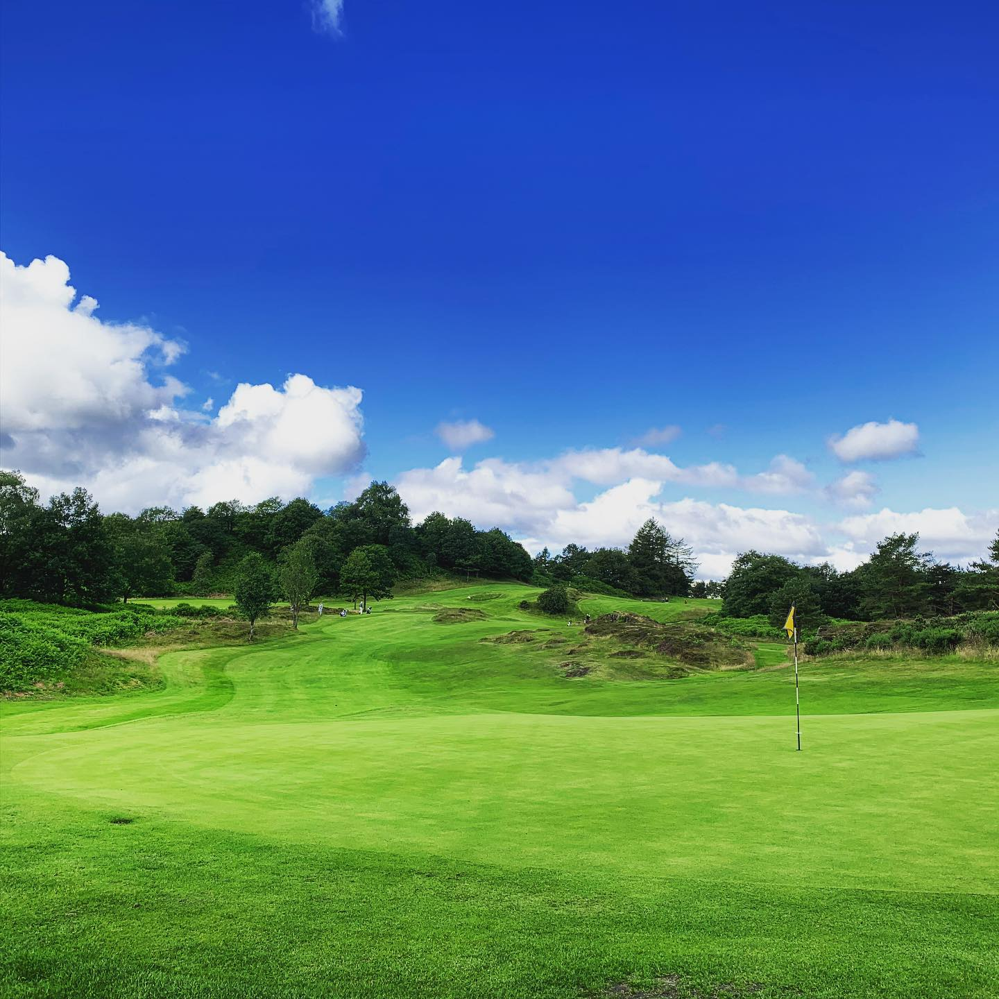 5f216e0067516-Windermere Golf  Course1